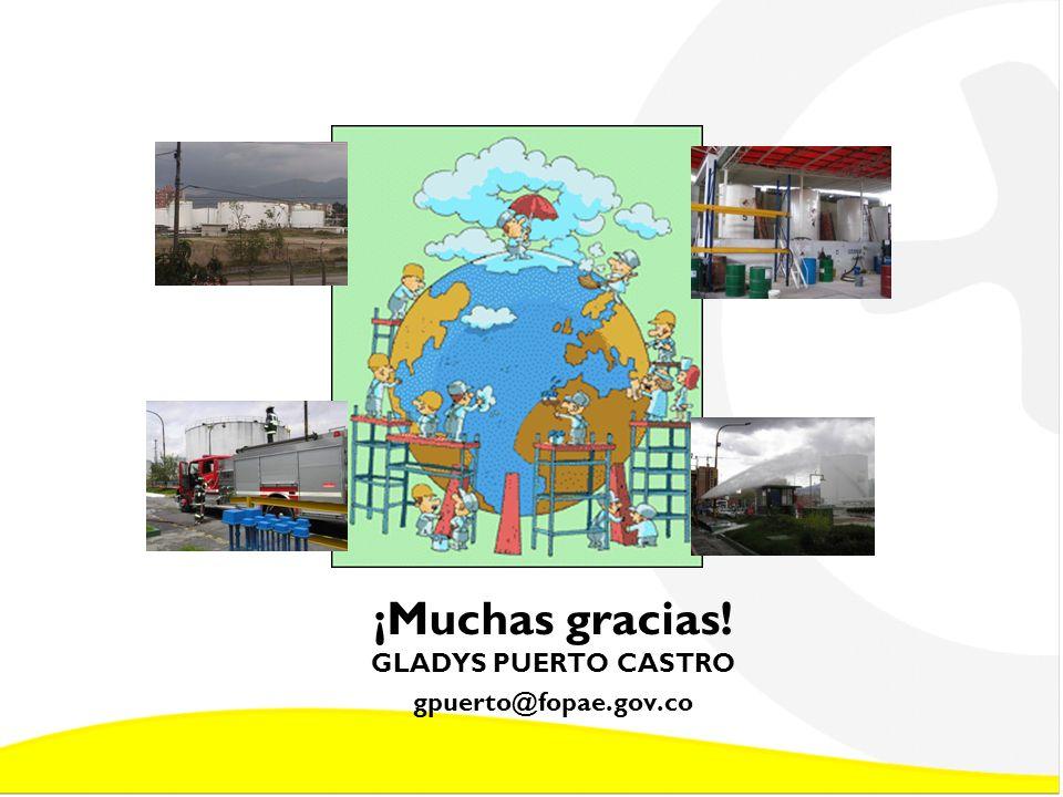 ¡Muchas gracias! GLADYS PUERTO CASTRO gpuerto@fopae.gov.co