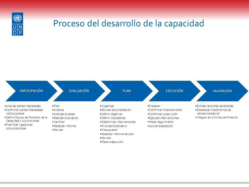 Proceso del desarrollo de la capacidad PARTICIPACIÓN Analizar partes interesadas Confirmar partes interesadas institucionales Definir Equipo de Foment