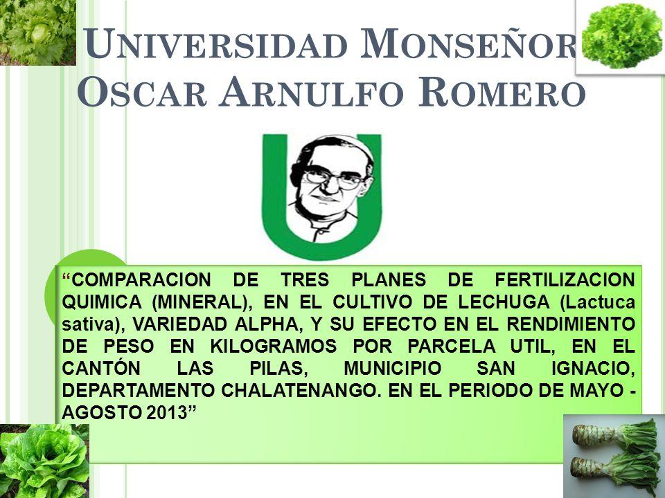 REQUERIMIENTOS EDAFO-CLIMATICAS Y ELEVACIÓN.Suelo.