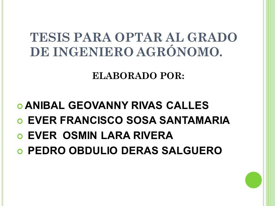 TESIS PARA OPTAR AL GRADO DE INGENIERO AGRÓNOMO. ELABORADO POR: ANIBAL GEOVANNY RIVAS CALLES EVER FRANCISCO SOSA SANTAMARIA EVER OSMIN LARA RIVERA PED