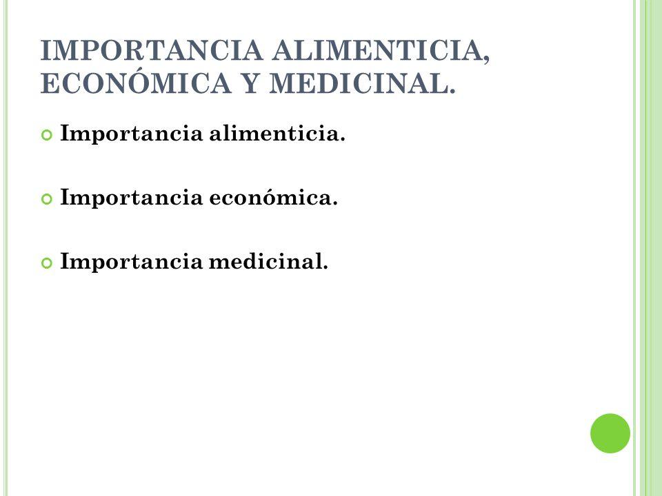 IMPORTANCIA ALIMENTICIA, ECONÓMICA Y MEDICINAL. Importancia alimenticia. Importancia económica. Importancia medicinal.