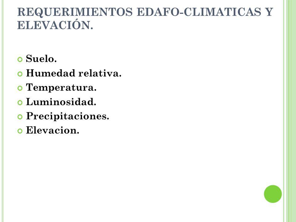 REQUERIMIENTOS EDAFO-CLIMATICAS Y ELEVACIÓN. Suelo. Humedad relativa. Temperatura. Luminosidad. Precipitaciones. Elevacion.