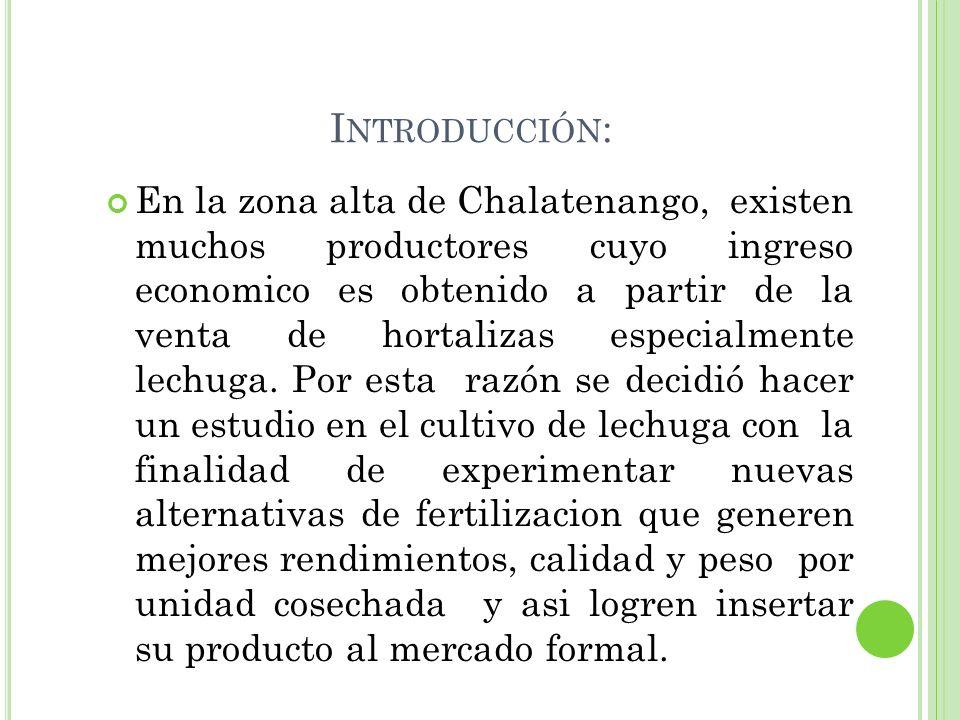 I NTRODUCCIÓN : En la zona alta de Chalatenango, existen muchos productores cuyo ingreso economico es obtenido a partir de la venta de hortalizas espe