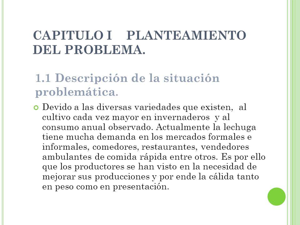 CAPITULO I PLANTEAMIENTO DEL PROBLEMA. Devido a las diversas variedades que existen, al cultivo cada vez mayor en invernaderos y al consumo anual obse