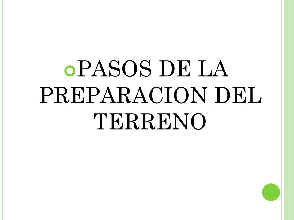 PASOS DE LA PREPARACION DEL TERRENO