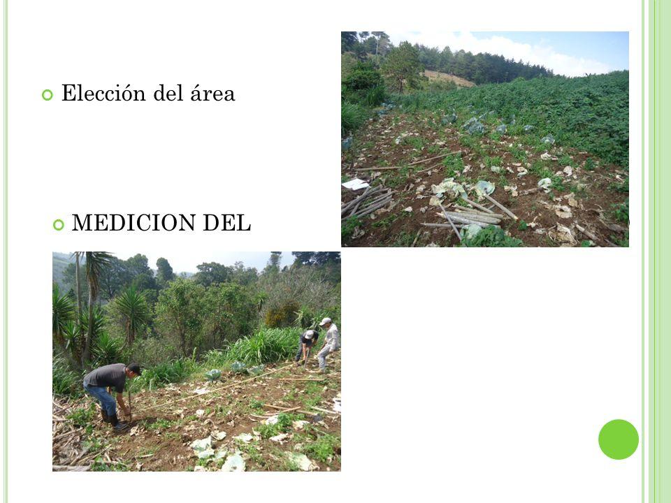 Elección del área experimental MEDICION DEL TERRENO