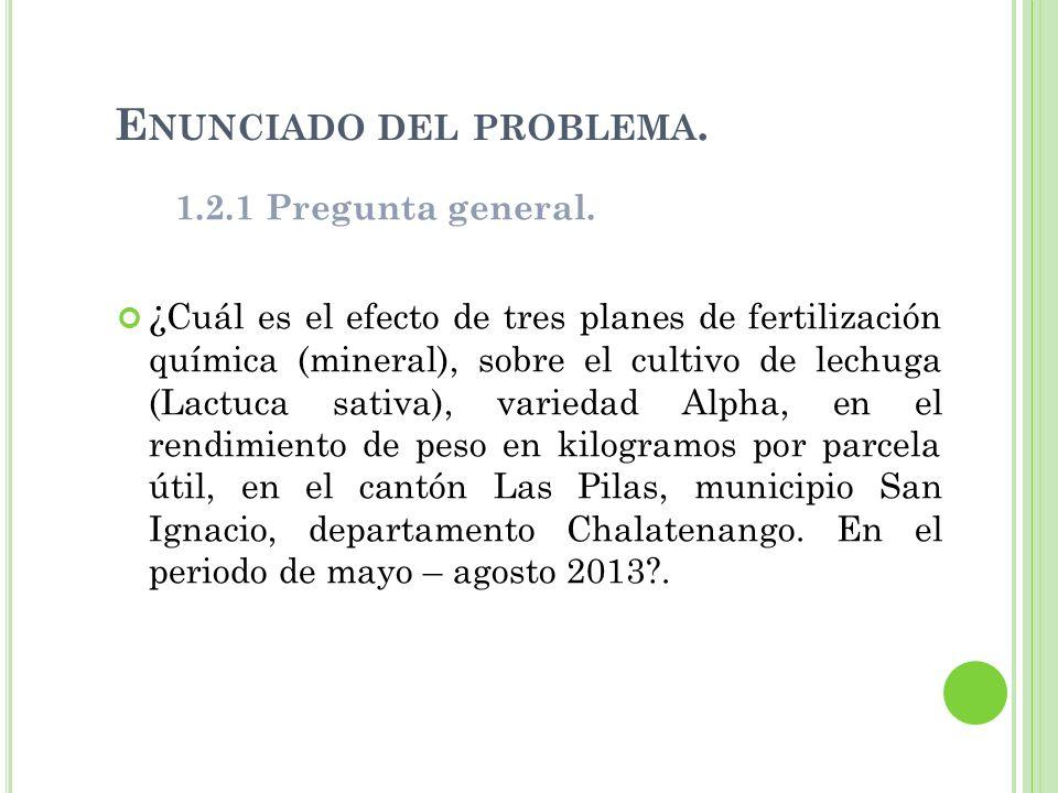E NUNCIADO DEL PROBLEMA. 1.2.1 Pregunta general. ¿ Cuál es el efecto de tres planes de fertilización química (mineral), sobre el cultivo de lechuga (L