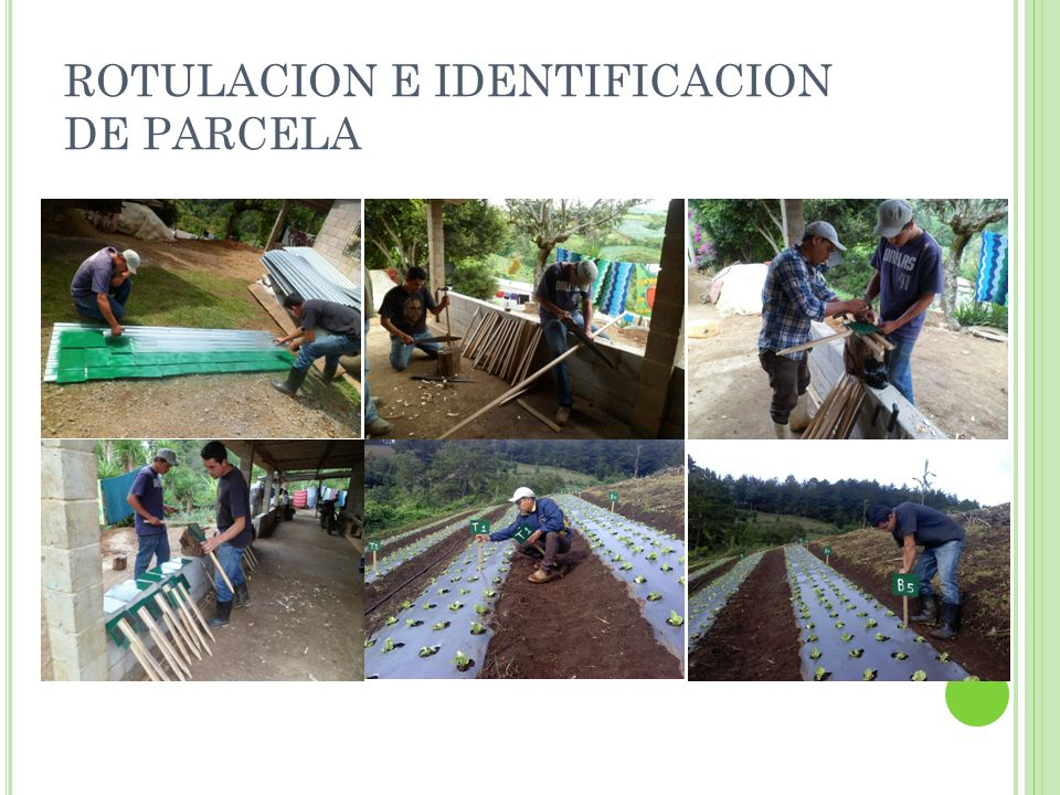 ROTULACION E IDENTIFICACION DE PARCELA