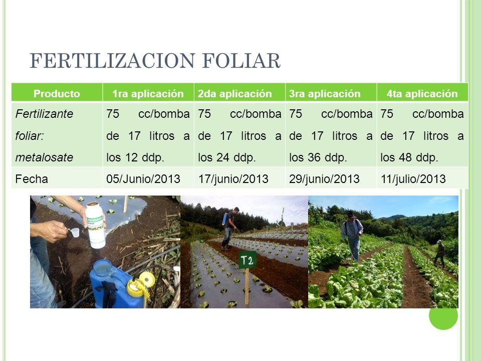 FERTILIZACION FOLIAR Producto1ra aplicación2da aplicación3ra aplicación4ta aplicación Fertilizante foliar: metalosate 75 cc/bomba de 17 litros a los 1