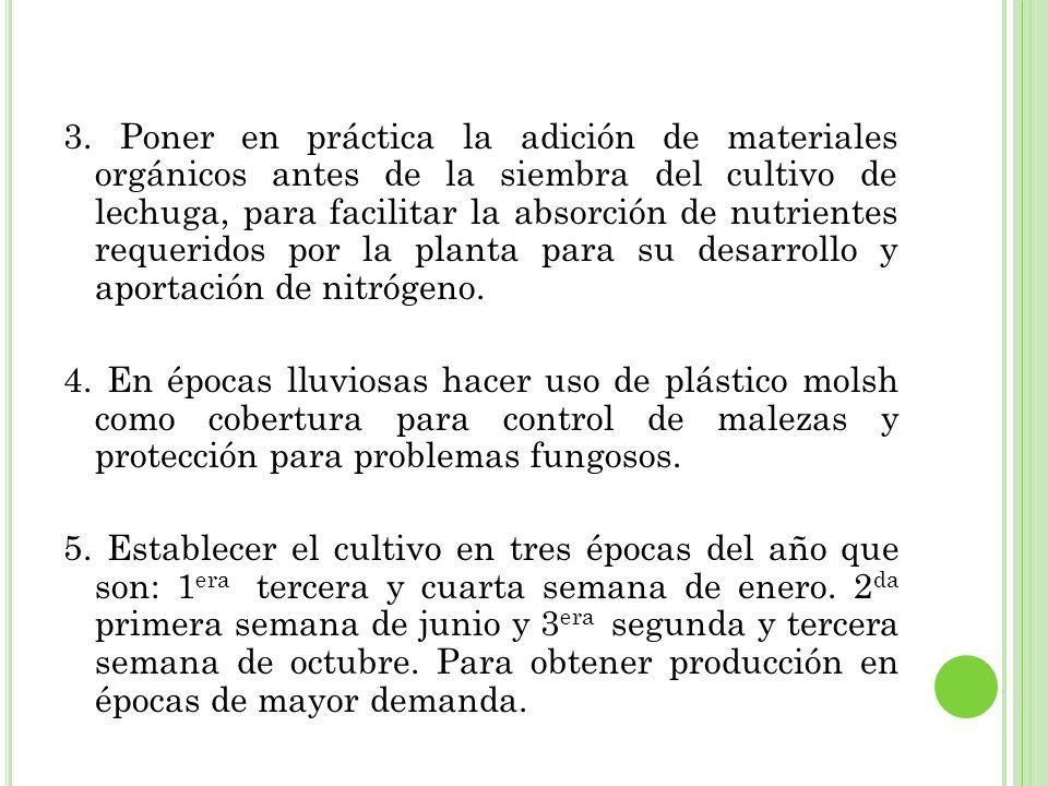3. Poner en práctica la adición de materiales orgánicos antes de la siembra del cultivo de lechuga, para facilitar la absorción de nutrientes requerid