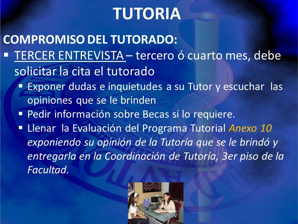 TUTORIA COMPROMISO DEL TUTORADO: TERCER ENTREVISTA – tercero ó cuarto mes, debe solicitar la cita el tutorado Exponer dudas e inquietudes a su Tutor y
