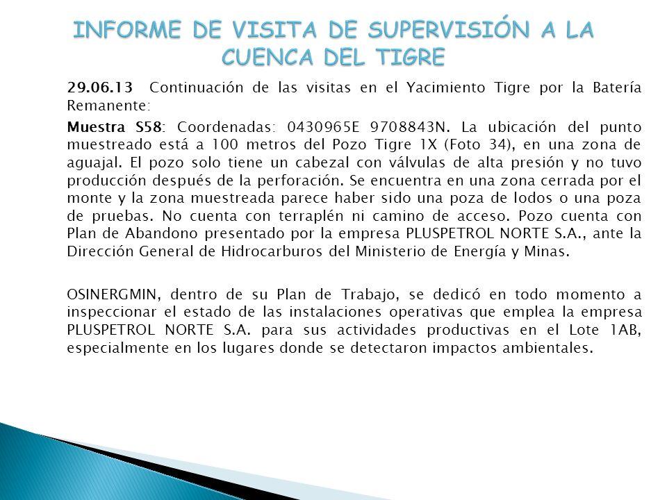 29.06.13 Continuación de las visitas en el Yacimiento Tigre por la Batería Remanente: Muestra S58: Coordenadas: 0430965E 9708843N. La ubicación del pu