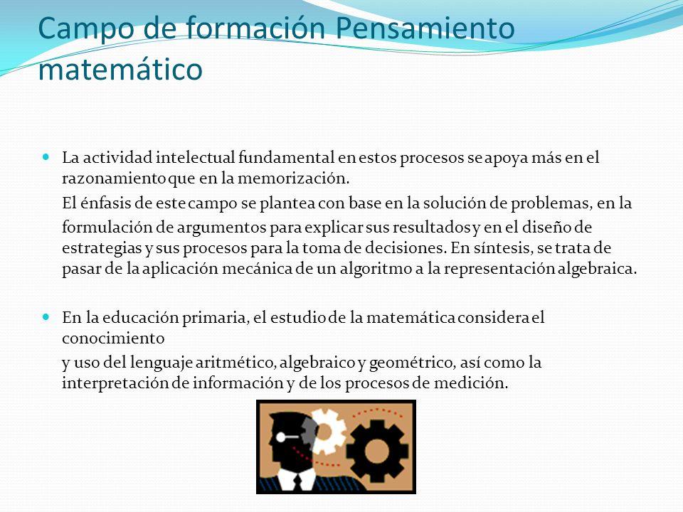 Campo de formación Pensamiento matemático La actividad intelectual fundamental en estos procesos se apoya más en el razonamiento que en la memorizació