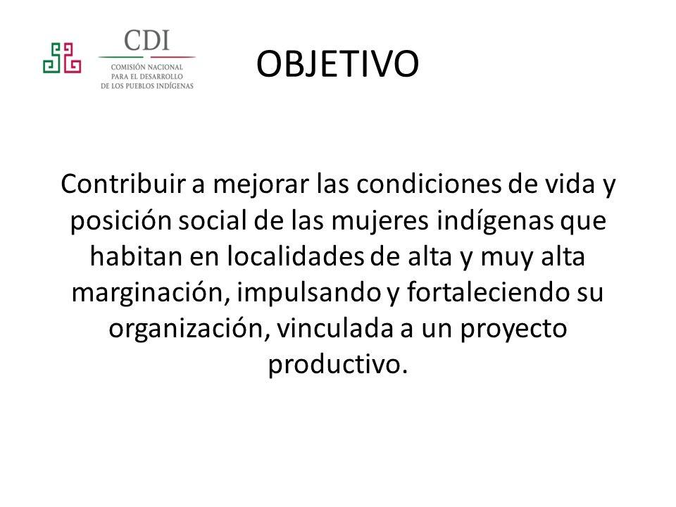 Las acciones que se llevan a cabo mediante el programa impulsan el desarrollo humano en el ámbito productivo.