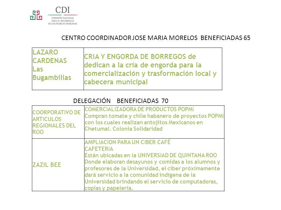 CENTRO COORDINADOR JOSE MARIA MORELOS BENEFICIADAS 65 LAZARO CARDENAS Las Bugambilias CRIA Y ENGORDA DE BORREGOS de dedican a la cría de engorda para la comercialización y trasformación local y cabecera municipal DELEGACIÓN BENEFICIADAS 70 COORPORATIVO DE ARTICULOS REGIONALES DEL ROO COMERCIALIZADORA DE PRODUCTOS POPMI Compran tomate y chile habanero de proyectos POPMI con los cuales realizan antojitos Mexicanos en Chetumal.