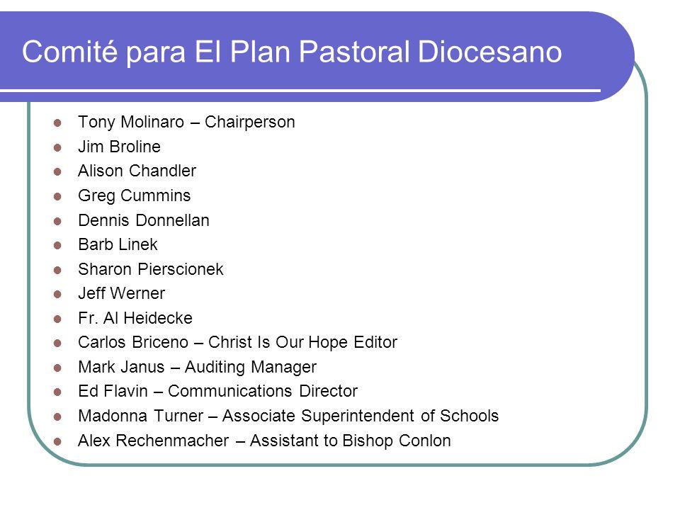 Comité para El Plan Pastoral Diocesano Tony Molinaro – Chairperson Jim Broline Alison Chandler Greg Cummins Dennis Donnellan Barb Linek Sharon Piersci