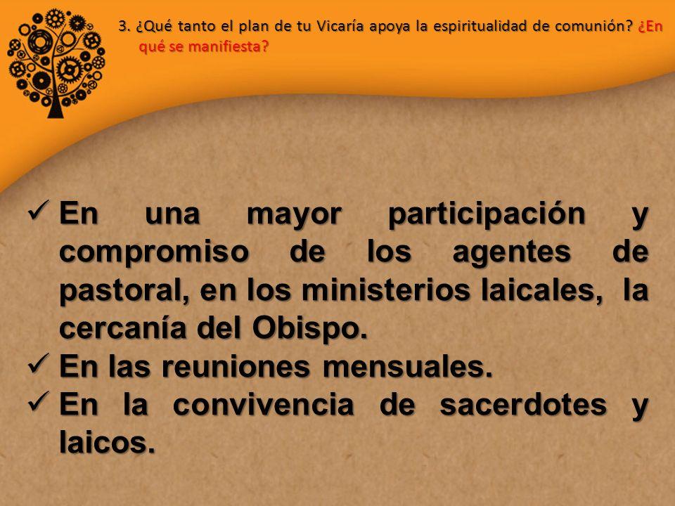 En una mayor participación y compromiso de los agentes de pastoral, en los ministerios laicales, la cercanía del Obispo.