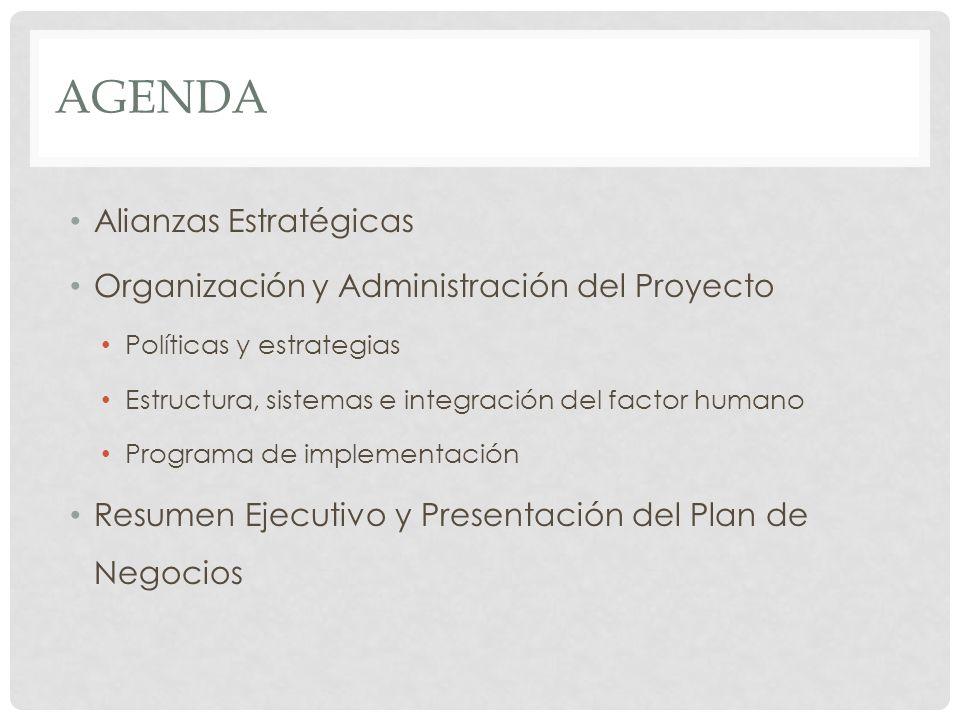 AGENDA Alianzas Estratégicas Organización y Administración del Proyecto Políticas y estrategias Estructura, sistemas e integración del factor humano P
