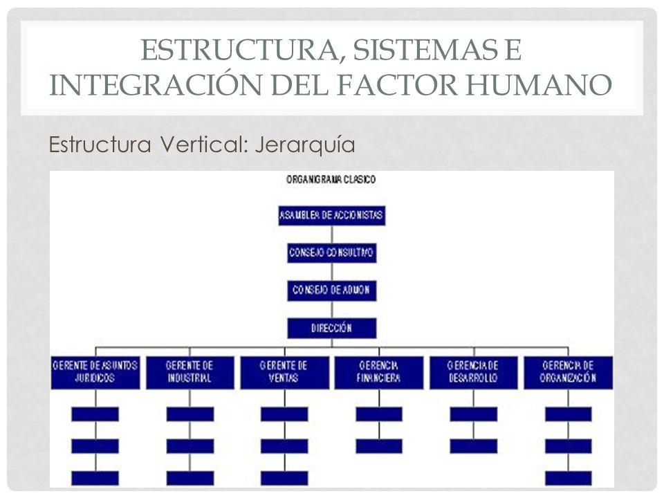 ESTRUCTURA, SISTEMAS E INTEGRACIÓN DEL FACTOR HUMANO Estructura Vertical: Jerarquía