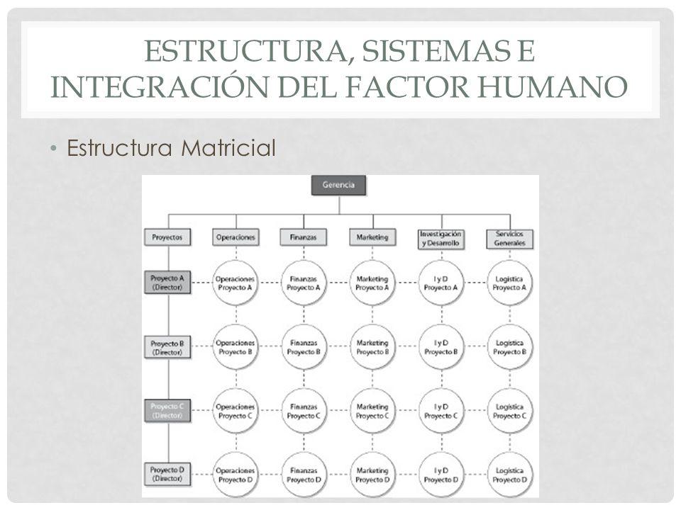 ESTRUCTURA, SISTEMAS E INTEGRACIÓN DEL FACTOR HUMANO Estructura Matricial