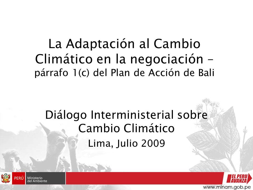 La Adaptación al Cambio Climático en la negociación – párrafo 1(c) del Plan de Acción de Bali Diálogo Interministerial sobre Cambio Climático Lima, Ju