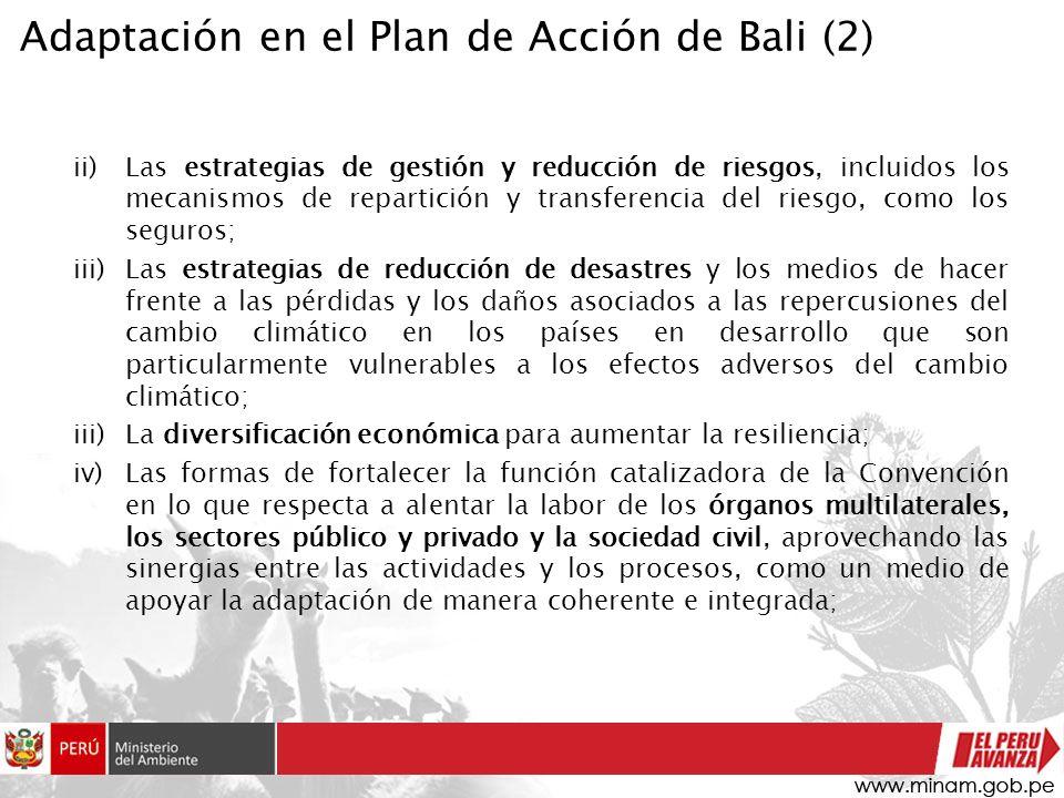 ii)Las estrategias de gestión y reducción de riesgos, incluidos los mecanismos de repartición y transferencia del riesgo, como los seguros; iii)Las es