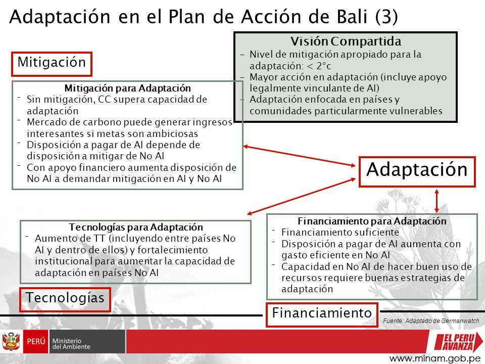 Adaptación en el Plan de Acción de Bali (3) Visión Compartida -Nivel de mitigación apropiado para la adaptación: < 2°c -Mayor acción en adaptación (in