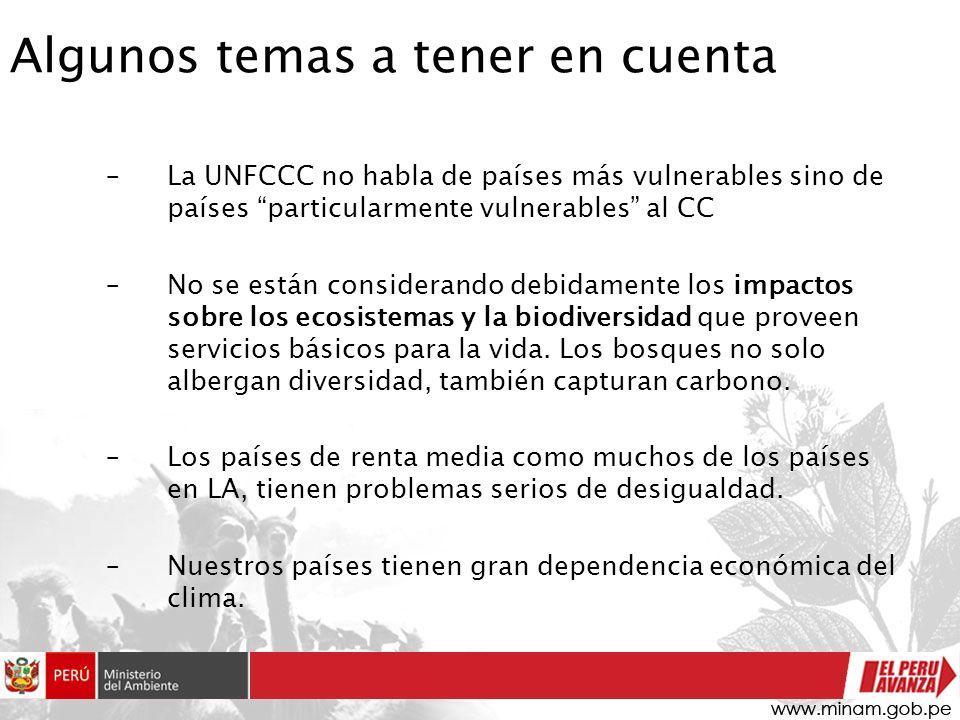 Algunos temas a tener en cuenta –La UNFCCC no habla de países más vulnerables sino de países particularmente vulnerables al CC –No se están consideran