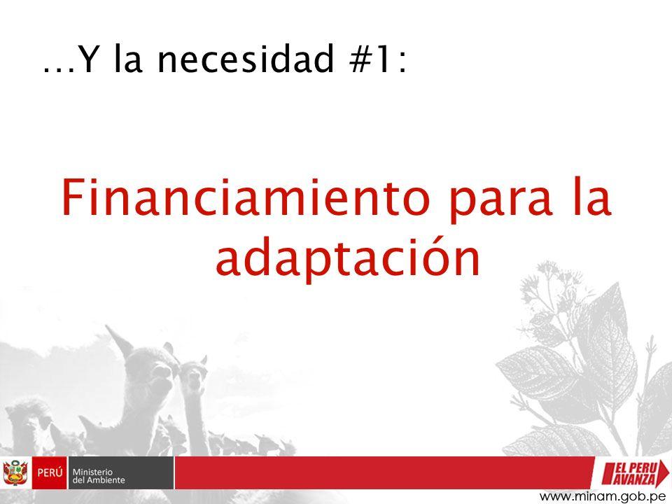 …Y la necesidad #1: Financiamiento para la adaptación