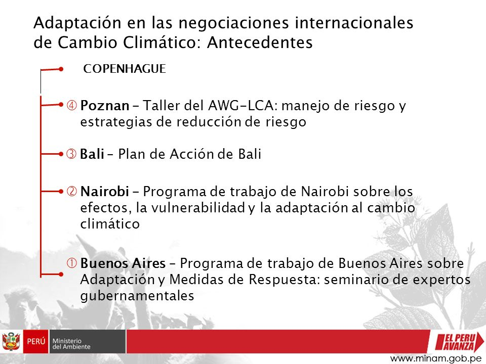 Contenido de la presentación Adaptación al cambio climático: conceptos e implicancias La adaptación en las negociaciones internacionales de cambio climático El Plan de Acción de Bali (PAB) y la adaptación dentro del PAB Necesidades de América Latina y el Caribe en el proceso de negociación
