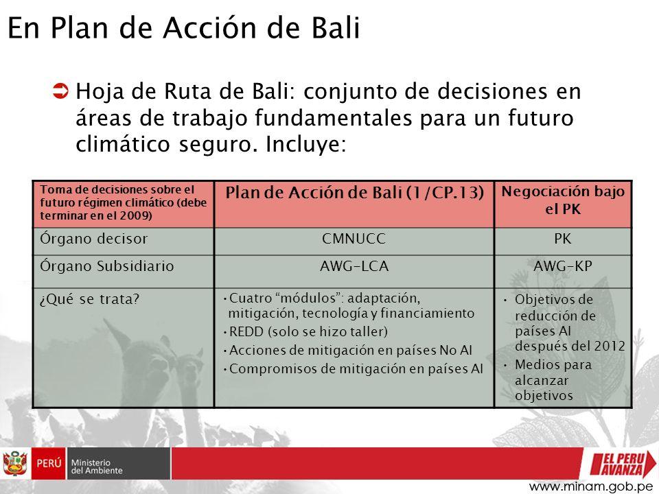 En Plan de Acción de Bali Hoja de Ruta de Bali: conjunto de decisiones en áreas de trabajo fundamentales para un futuro climático seguro. Incluye: Tom