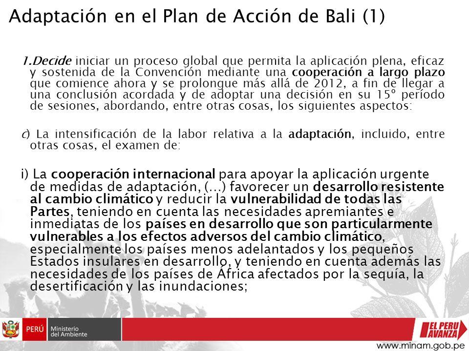 1.Decide iniciar un proceso global que permita la aplicación plena, eficaz y sostenida de la Convención mediante una cooperación a largo plazo que com