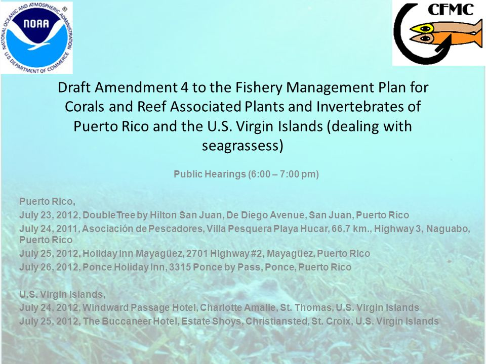Draft Amendment 4 to the Fishery Management Plan for Corals and Reef Associated Plants and Invertebrates of Puerto Rico and the U.S.
