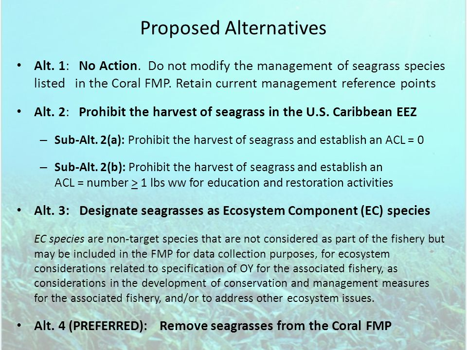 Proposed Alternatives Alt. 1: No Action. Do not modify the management of seagrass species listed in the Coral FMP. Retain current management reference