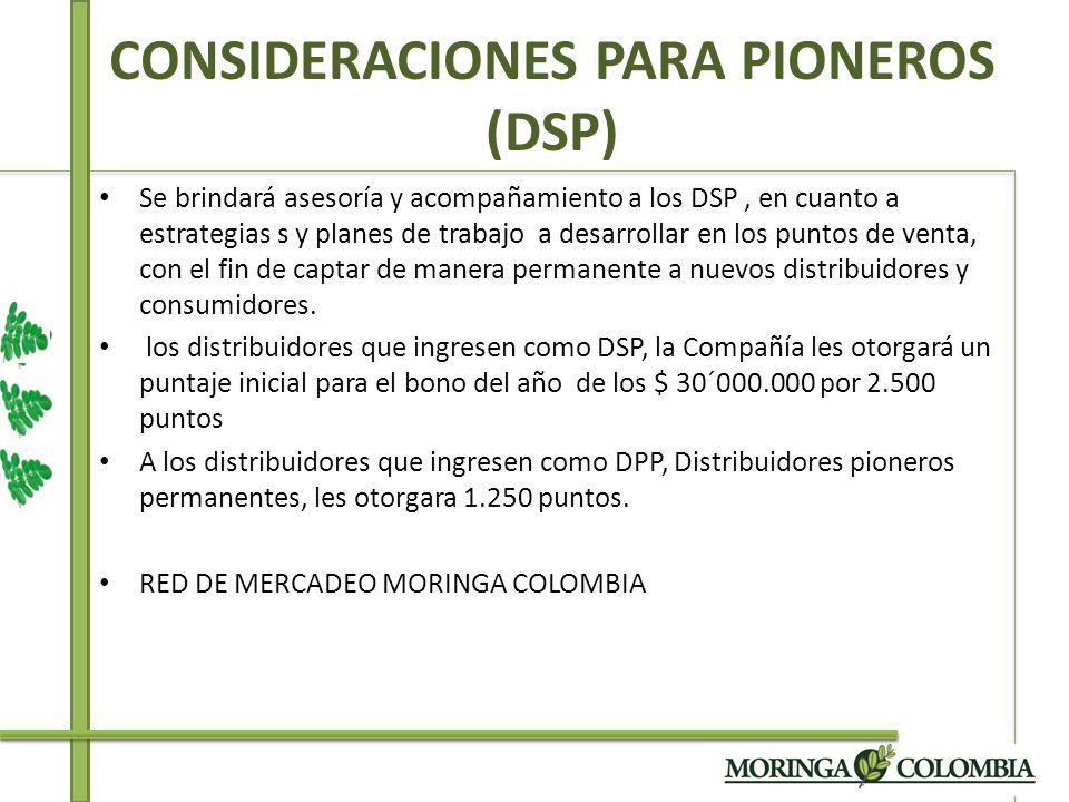 CONSIDERACIONES PARA PIONEROS (DSP) Se brindará asesoría y acompañamiento a los DSP, en cuanto a estrategias s y planes de trabajo a desarrollar en lo