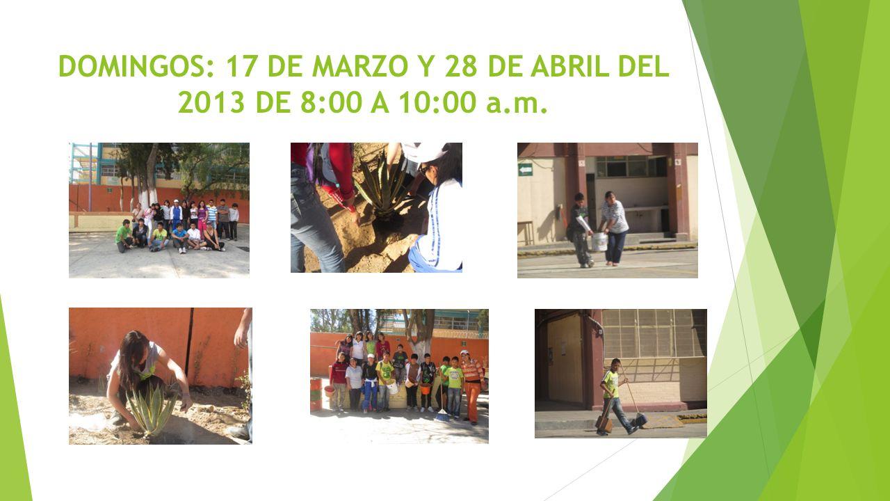 DOMINGOS: 17 DE MARZO Y 28 DE ABRIL DEL 2013 DE 8:00 A 10:00 a.m.