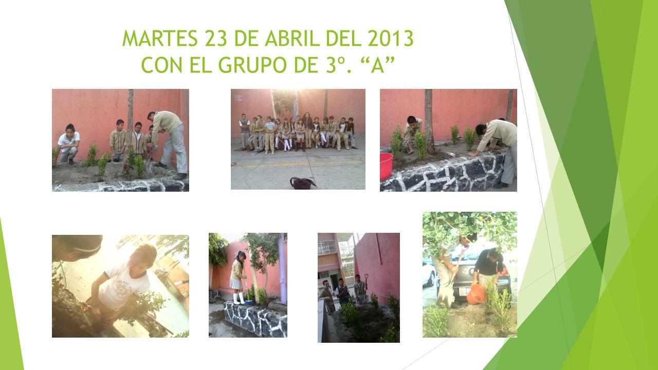 MARTES 23 DE ABRIL DEL 2013 CON EL GRUPO DE 3º. A