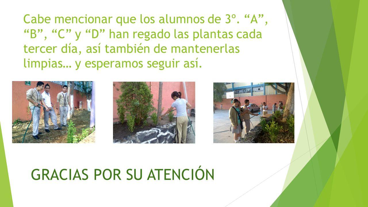 Cabe mencionar que los alumnos de 3º. A, B, C y D han regado las plantas cada tercer día, así también de mantenerlas limpias… y esperamos seguir así.