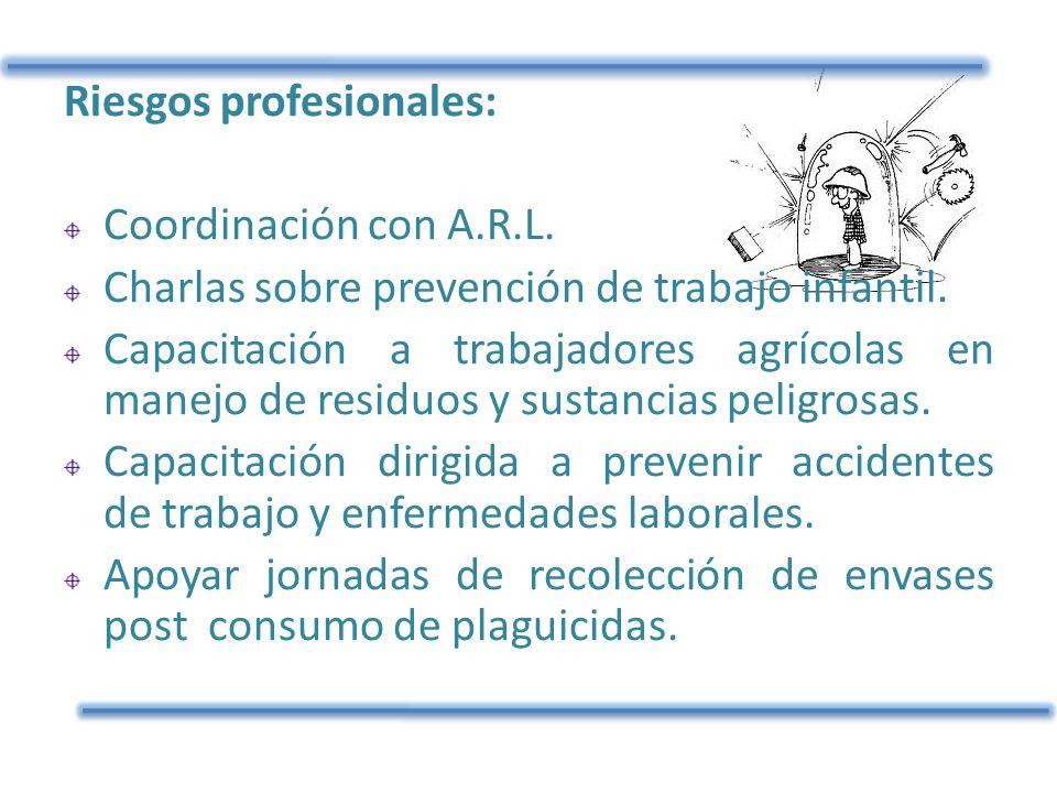 Riesgos profesionales: Coordinación con A.R.L. Charlas sobre prevención de trabajo infantil. Capacitación a trabajadores agrícolas en manejo de residu