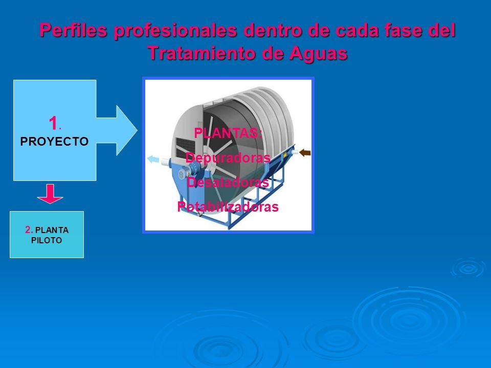 1. PROYECTO 2. PLANTA PILOTO PLANTAS: Depuradoras Desaladoras Potabilizadoras Perfiles profesionales dentro de cada fase del Tratamiento de Aguas