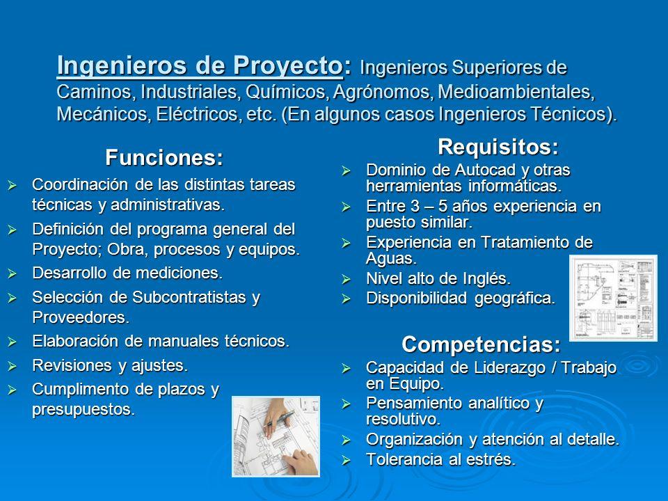Funciones: Coordinación de las distintas tareas técnicas y administrativas. Coordinación de las distintas tareas técnicas y administrativas. Definició