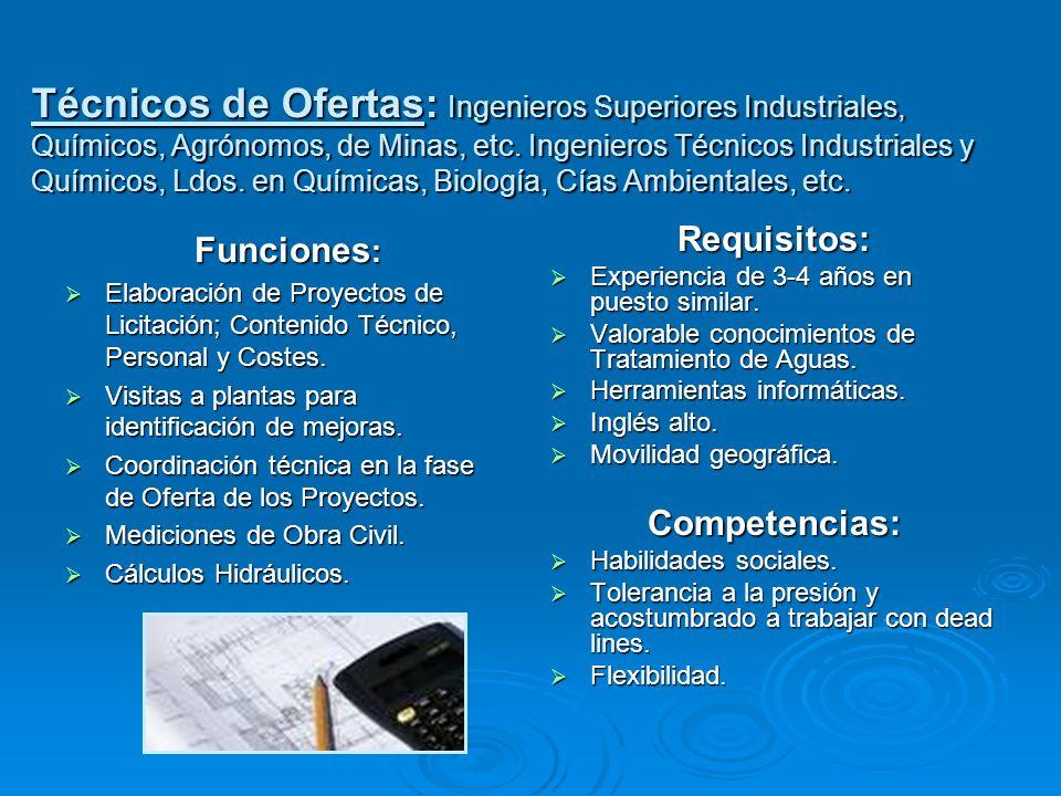 Funciones : Elaboración de Proyectos de Licitación; Contenido Técnico, Personal y Costes. Elaboración de Proyectos de Licitación; Contenido Técnico, P