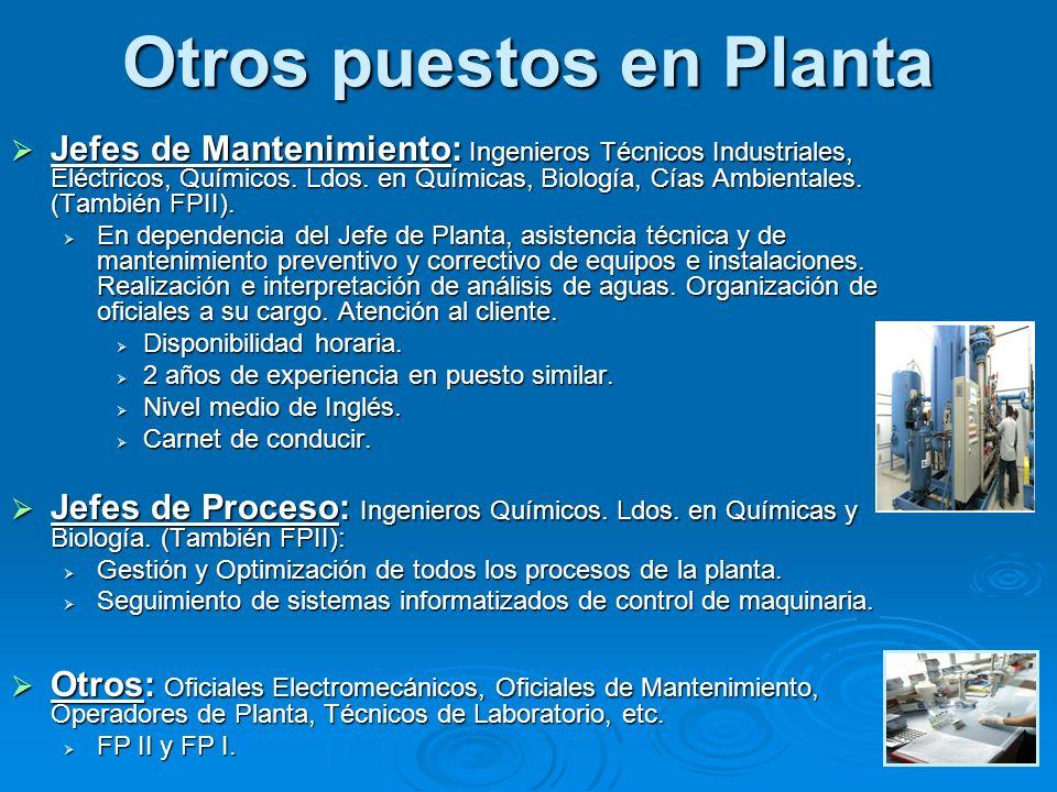 Otros puestos en Planta Jefes de Mantenimiento: Ingenieros Técnicos Industriales, Eléctricos, Químicos. Ldos. en Químicas, Biología, Cías Ambientales.