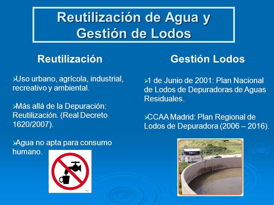 Reutilización de Agua y Gestión de Lodos Reutilización Uso urbano, agrícola, industrial, recreativo y ambiental. Más allá de la Depuración: Reutilizac