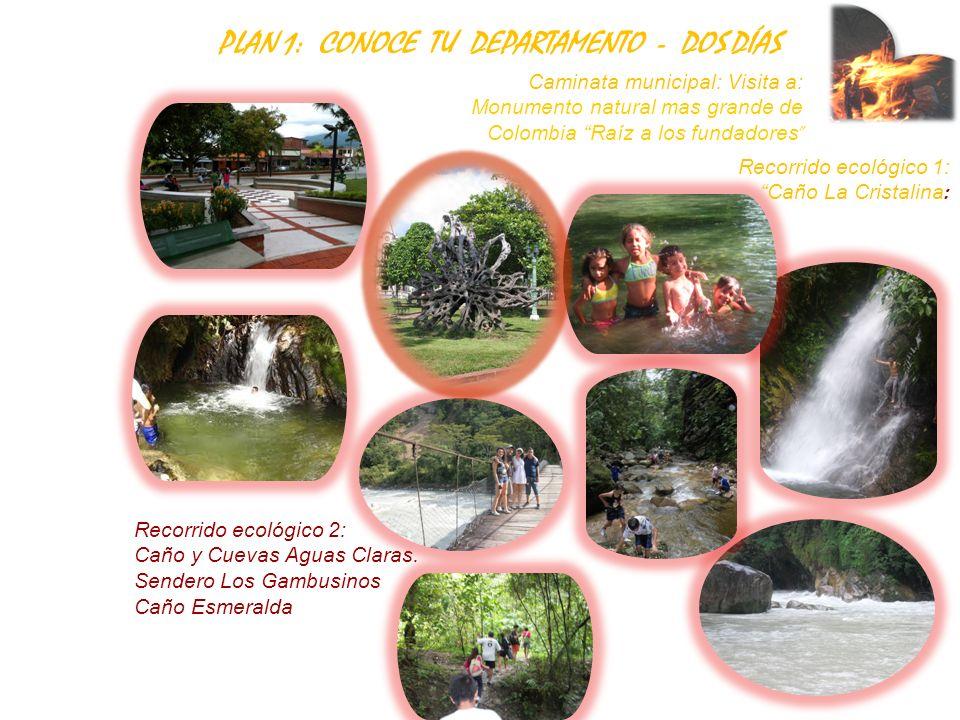 Caminata municipal: Visita a: Monumento natural mas grande de Colombia Raíz a los fundadores Recorrido ecológico 1: Caño La Cristalina : Recorrido eco