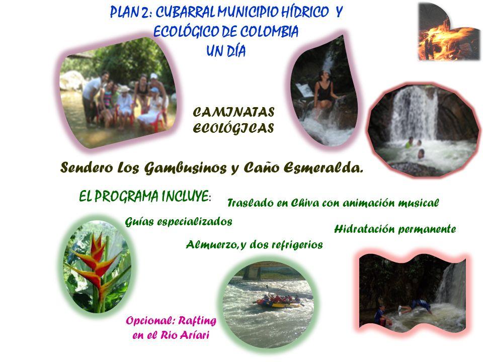 Sendero Los Gambusinos y Caño Esmeralda. PLAN 2: CUBARRAL MUNICIPIO HÍDRICO Y ECOLÓGICO DE COLOMBIA UN DÍA CAMINATAS ECOLÓGICAS Traslado en Chiva con