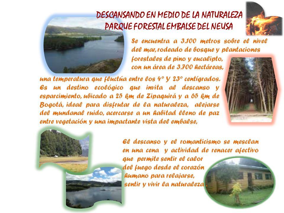 DESCANSANDO EN MEDIO DE LA NATURALEZA PARQUE FORESTAL EMBALSE DEL NEUSA Se encuentra a 3.100 metros sobre el nivel del mar, rodeado de bosque y planta