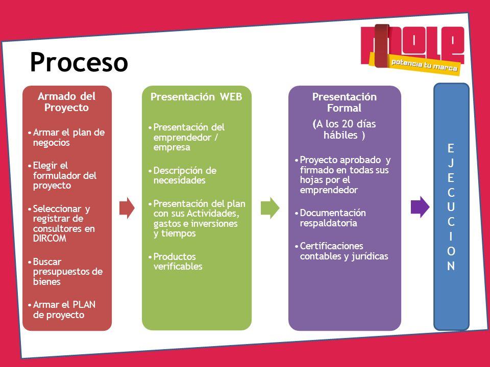 Proceso Armado del Proyecto Armar el plan de negocios Elegir el formulador del proyecto Seleccionar y registrar de consultores en DIRCOM Buscar presup