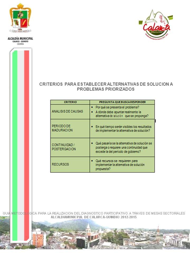 CRITERIOS PARA ESTABLECER ALTERNATIVAS DE SOLUCION A PROBLEMAS PRIORIZADOS