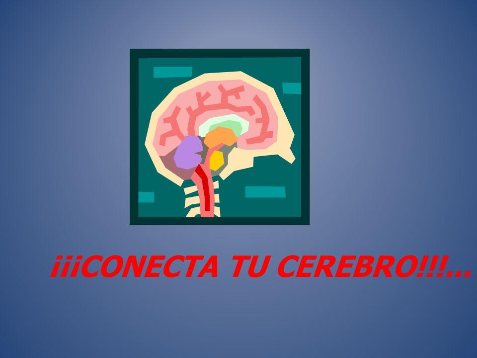 Atención Concentración Coordinación Equilibrio Rapidez Reacción Relajación Respiración FITNESS FOR LEARNING